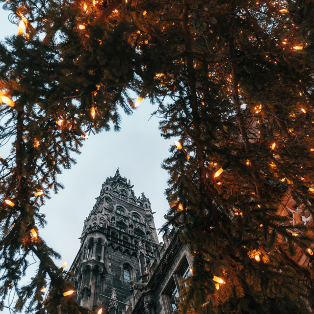 """""""Rathaus and Christmas tree in Munich, Bavaria"""" stock image"""