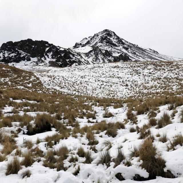 """Nevado de Toluca"" stock image"