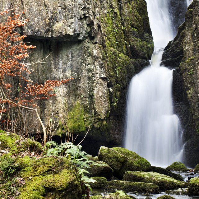 """Catrigg Force near Stainforth"" stock image"