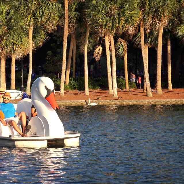 """Tourists in Swan Paddle Boat on Lake Eola in Orlando, Florida"" stock image"