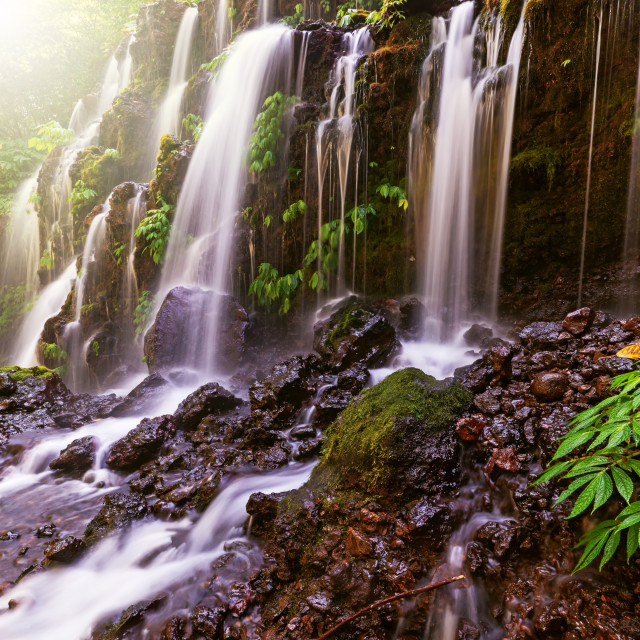 """Banyu Wana Amertha waterfall in Bali Indonesia."" stock image"