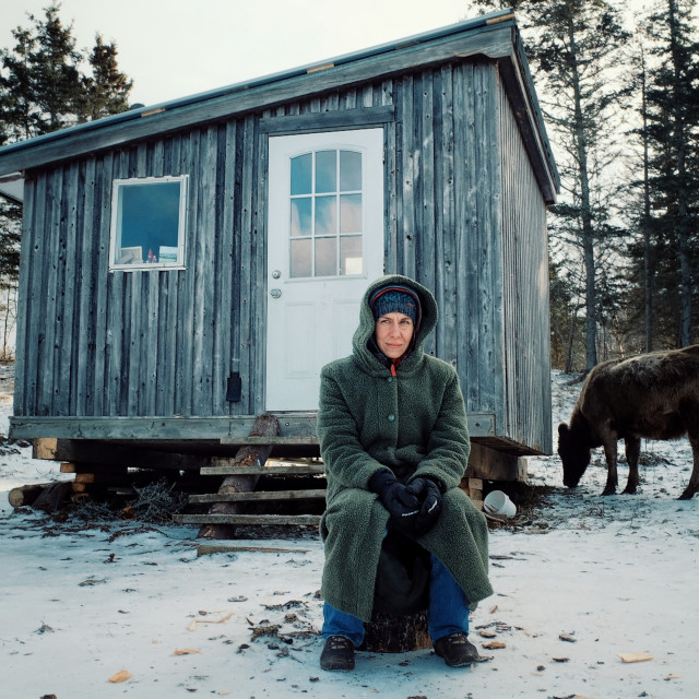 """""""young nomad girl sitting in front her cabin close to the sea shore during winter in the snow with a cow"""" stock image"""
