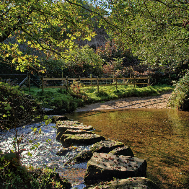 """Stepping stones across the River Bovey in early autumn."" stock image"