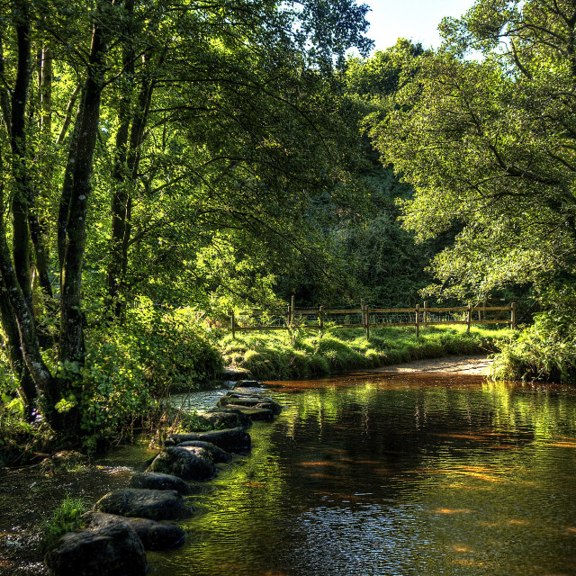 """Stepping stones across the River Bovey in summer."" stock image"
