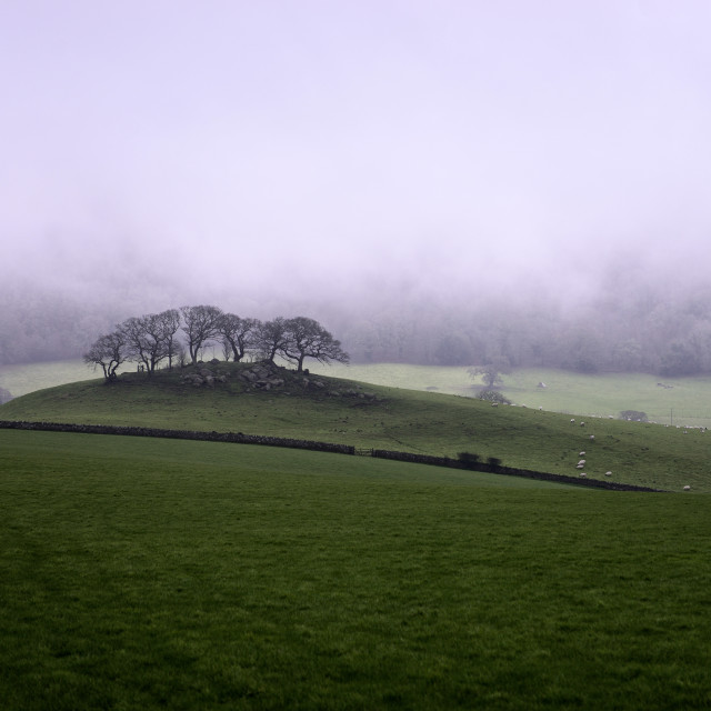 """Wray Barton in the mist."" stock image"