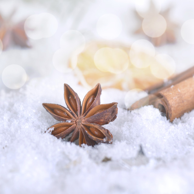 """anise in winter and christmas decoration"" stock image"