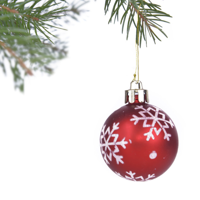 """""""Christmas baubles hung from a branch"""" stock image"""