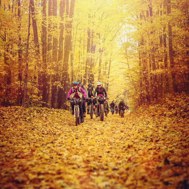 """Bikepacking on Golden Leaves"" stock image"