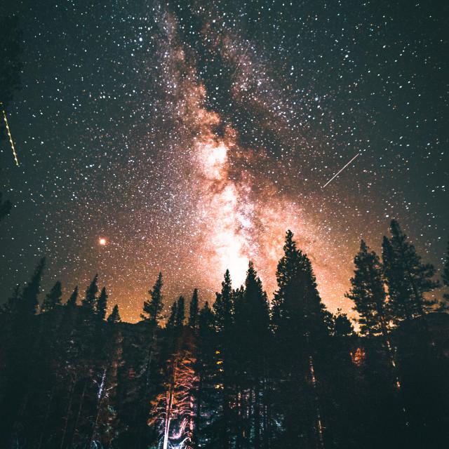 """Under the night sky"" stock image"