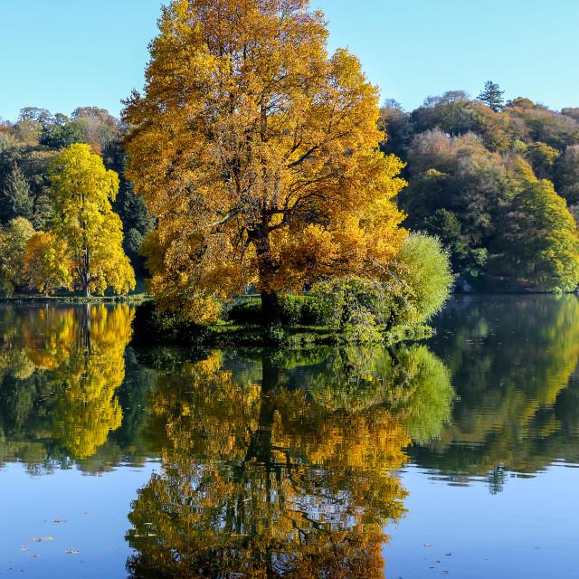 """Beautiful autumnal colours"" stock image"