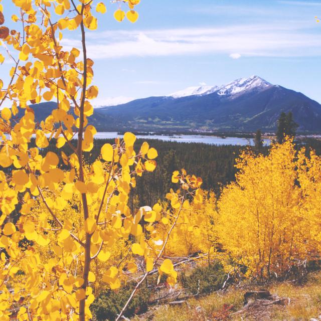 """Aspen, Ten Mile Range, Colorado"" stock image"