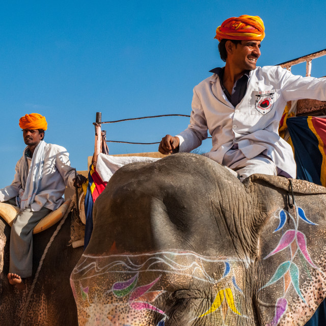 """Mahouts with Elephants - Amber Palace"" stock image"