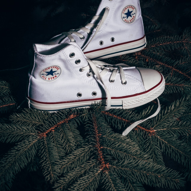 """Converse Sports Shoes Hanged on Pine Tree"" stock image"