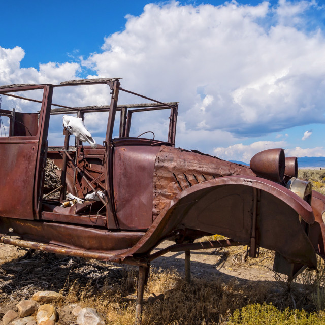 """""""Antique Automobile and Cow Skull in Great Basin National Park, Nevada"""" stock image"""