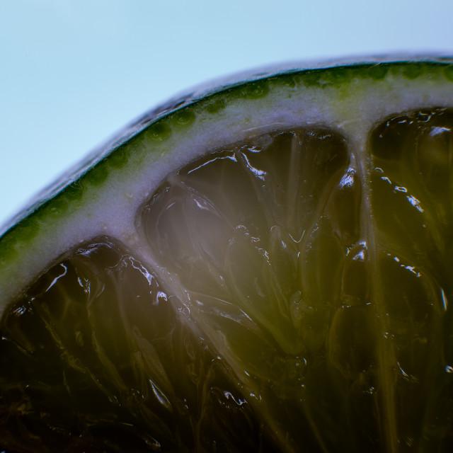"""Lime Segment"" stock image"