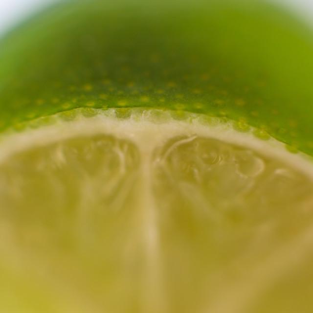 """Lime"" stock image"