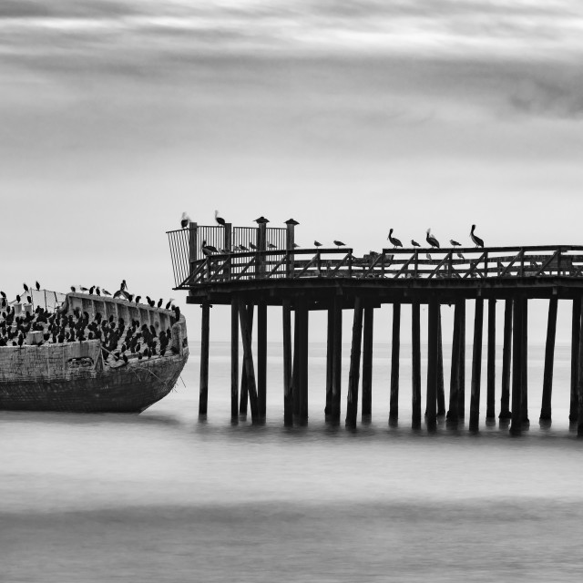 """""""Grounded ship and pier"""" stock image"""