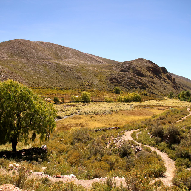 """Landscape of Jujuy"" stock image"