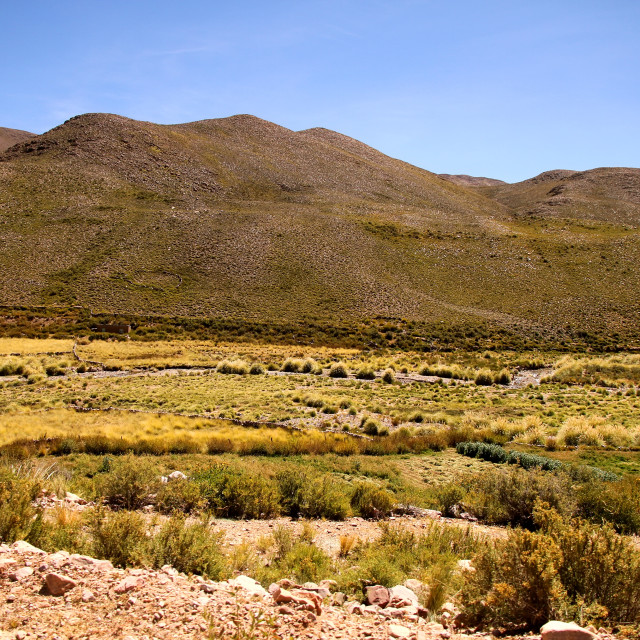 """Landscape of Jujuy"" stock image"