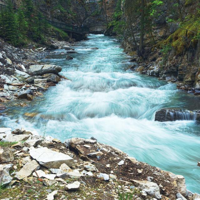 """Johnston Creek Banff National Park"" stock image"