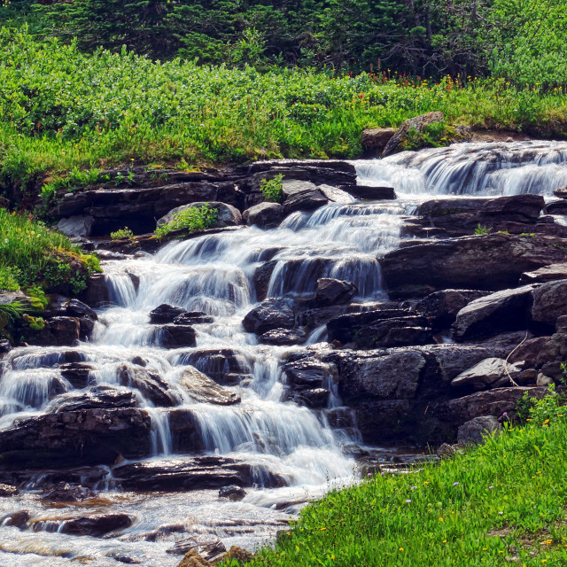 """Logan Pass Glacier National Park waterfall"" stock image"
