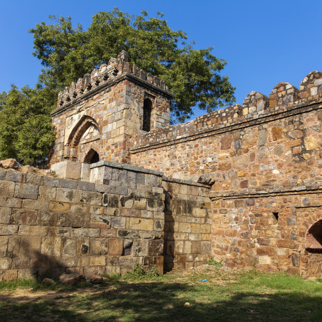 """India, Delhi, new Delhi, Lodi Garden, Tomb of Sikander Lodi's"" stock image"