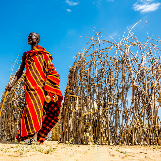 """Turkana tribesman"" stock image"