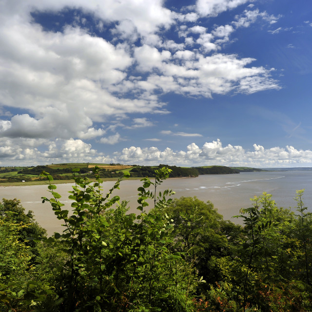 """Towy Estuary, Near Laugharne, South West Wales."" stock image"