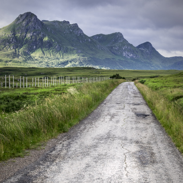 """Ben Loyal"" stock image"
