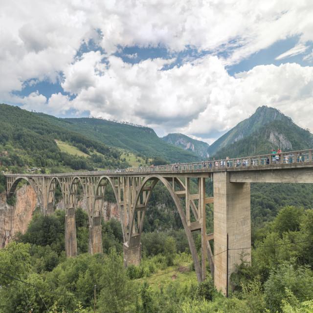 """Djurdjevica Tara Bridge"" stock image"