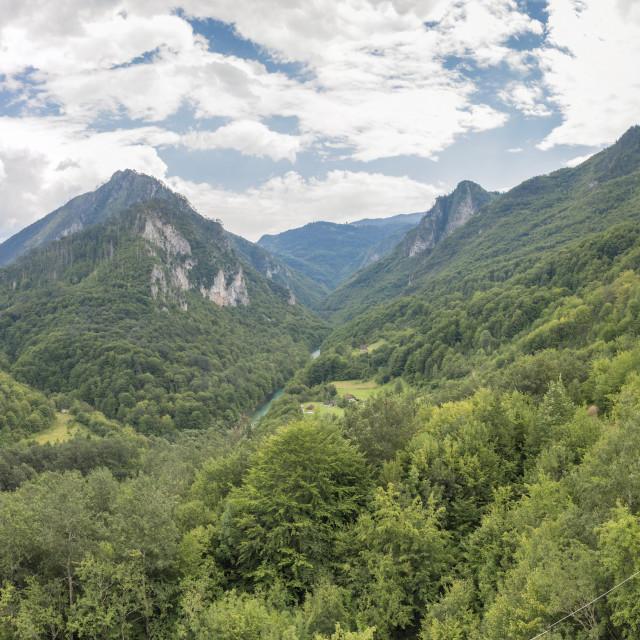 """""""Tara river gorge canyon in Montenegro"""" stock image"""