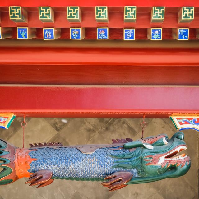 """Dragonfish"" stock image"