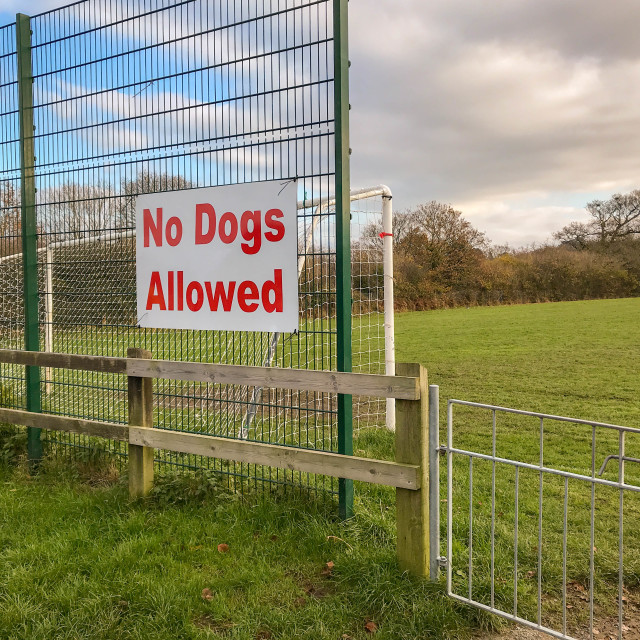 """""""Large """"No dogs allowed"""" sign at a football field"""" stock image"""