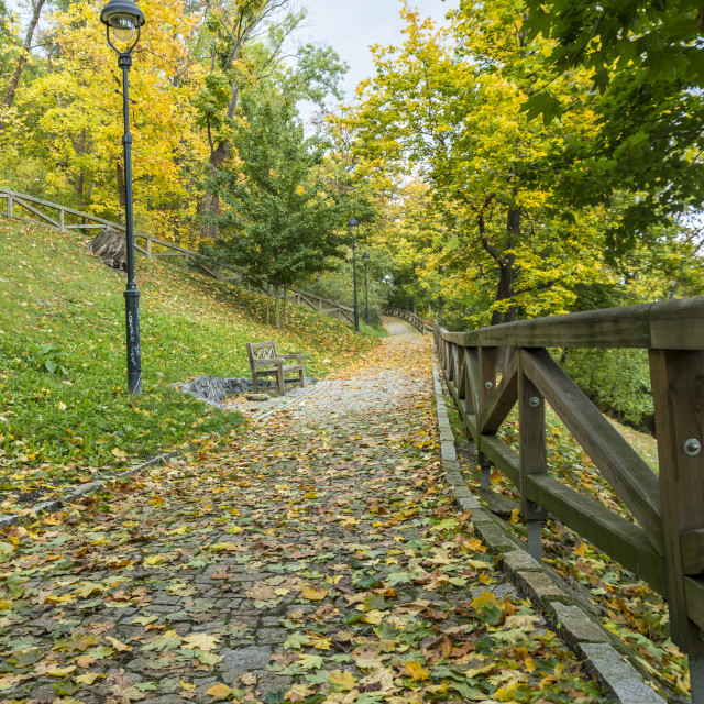 """Autumn in Petrin Hill"" stock image"