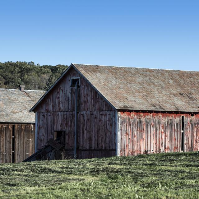 """Tobacco curing barns, Massachusetts"" stock image"