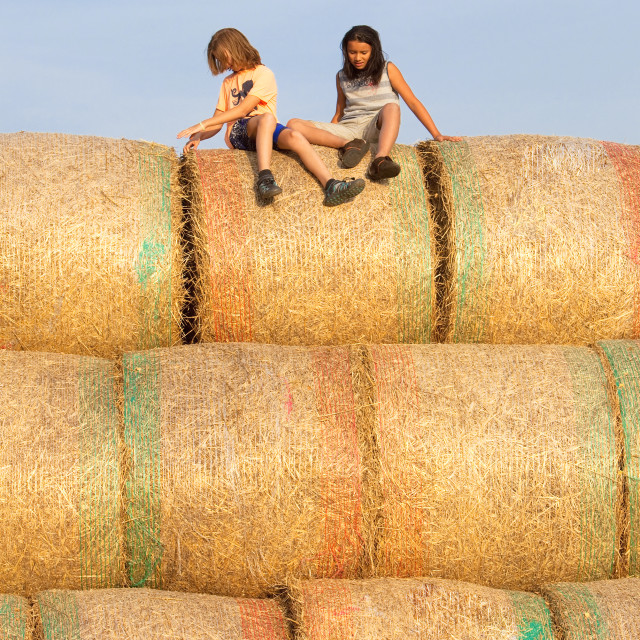 """Two Boys Having Fun with Bales of Hay in Summer."" stock image"
