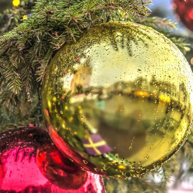 """Christmas tree on a rainy day"" stock image"
