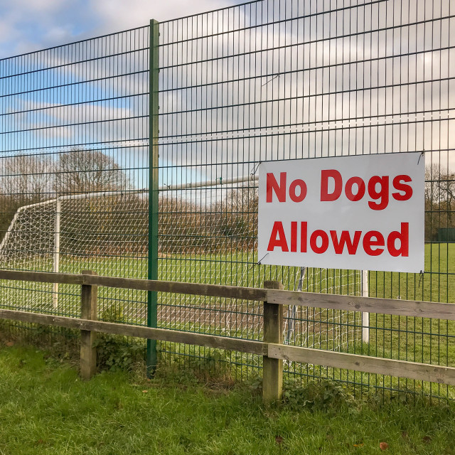 """""""Large """"No dogs allowed"""" sign on the fence of a football field"""" stock image"""