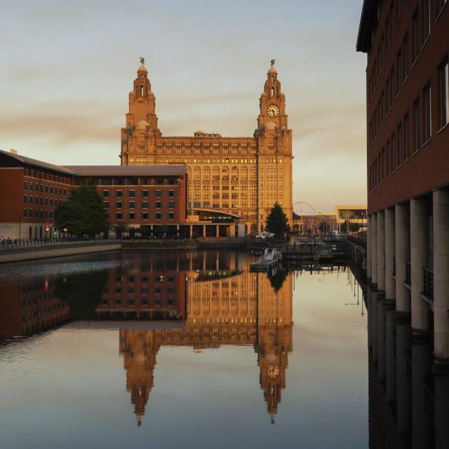 """Liverbuilding Liverpool"" stock image"