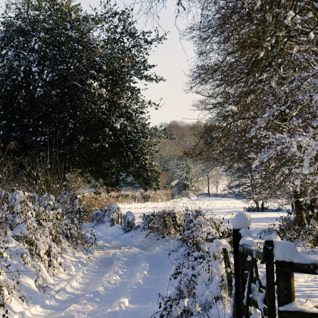 """A country lane in the snow"" stock image"