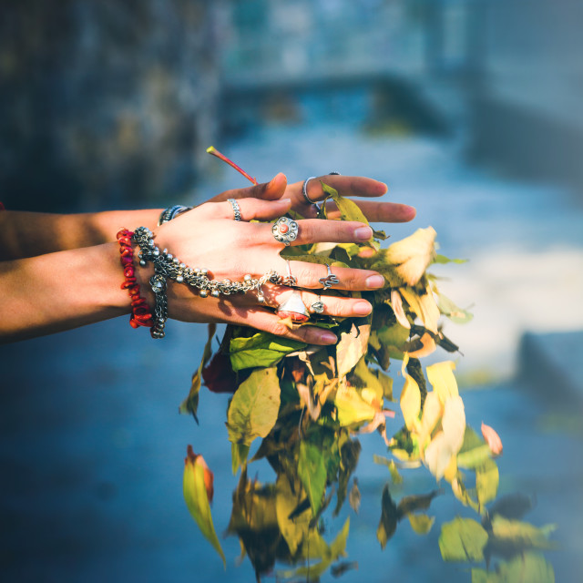 """""""boho autumn fashion woman hands with lot of rings and bracelets"""" stock image"""