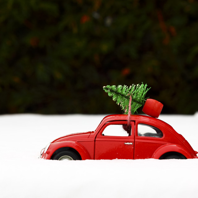 """""""Red toy Volkswagen beetle car with a Christmas tree tied to the roof on a snowy winters day"""" stock image"""