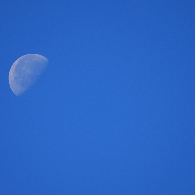 """""""Moon in Waning"""" stock image"""