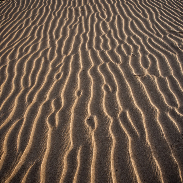 """Patterns in the sand - Sahara Desert"" stock image"