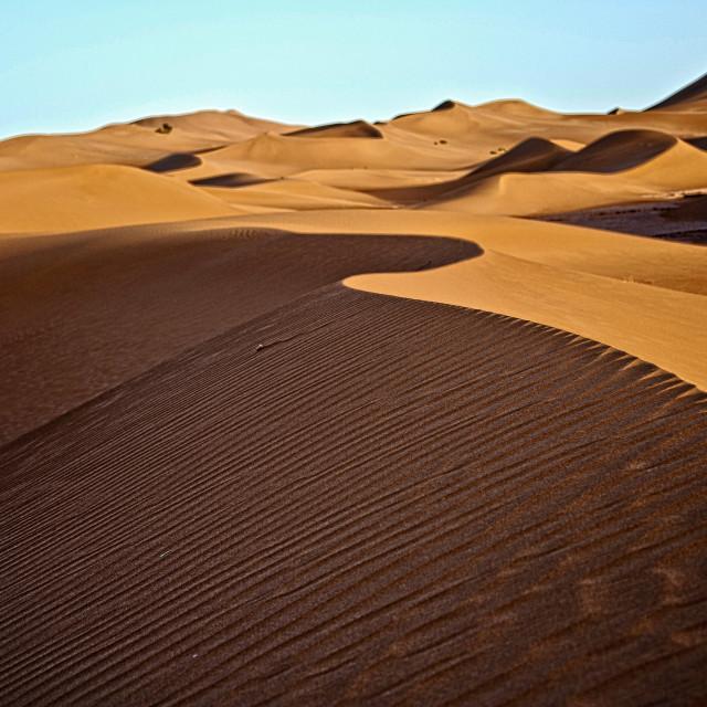 """Sahara Desert dawn #03"" stock image"