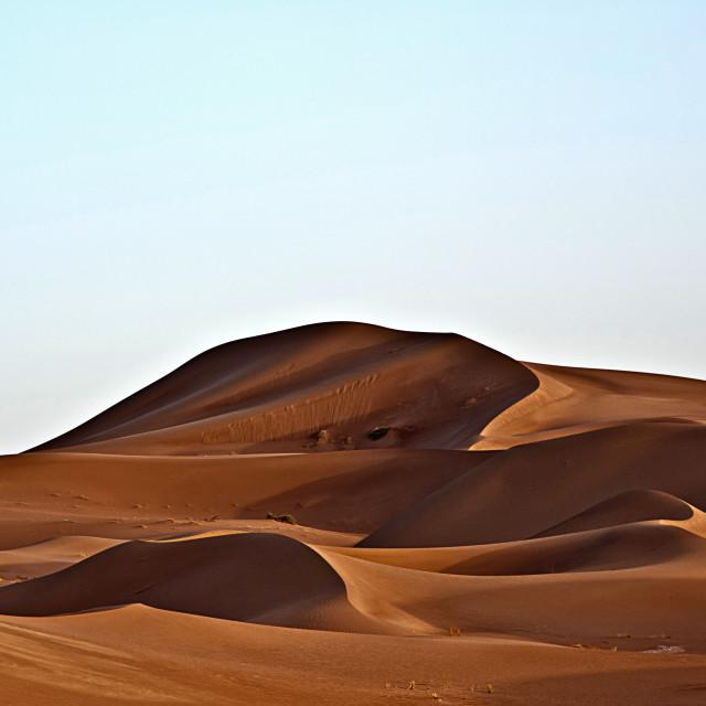 """Sahara Desert dawn #05"" stock image"