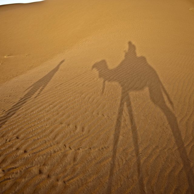 """Shadows in the sand - Sahara Desert"" stock image"