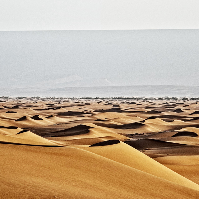 """Sahara Desert dunes"" stock image"