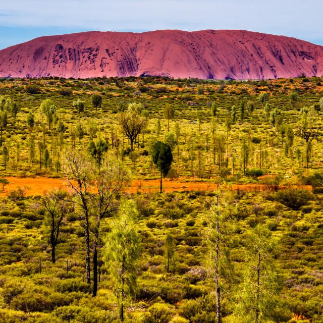 """""""Uluru"""" stock image"""