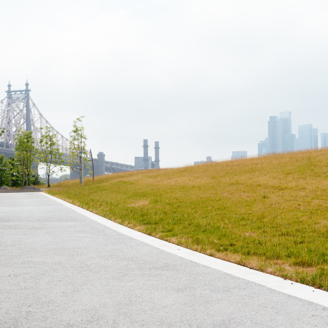 """""""Meadow in Roosevelt Island in New York City"""" stock image"""